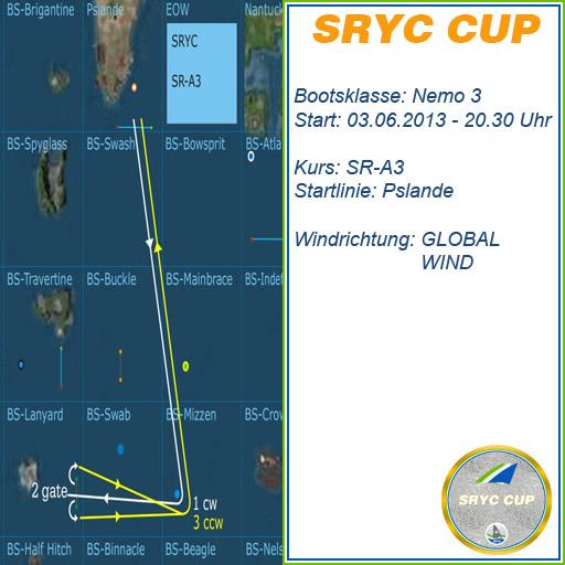 SRYC-CUP-NEMO0306