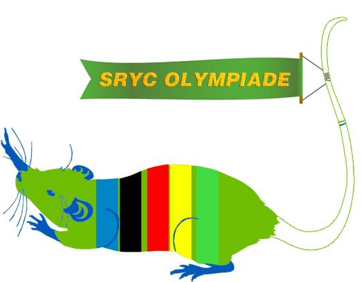 schiffsratten_olympiade